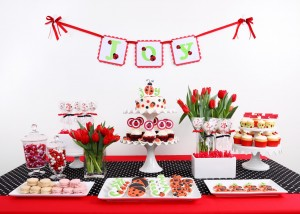 Ladybird Birthday Party Theme